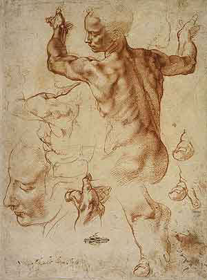 Michelangelo, Studies for the Libyan Sibyl. Sketch of Nude Man