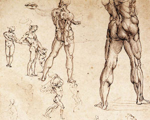 Leonardo da Vinci, Anatomy Drawing of Naked Man: Study of Legs
